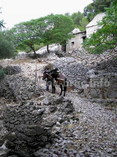 Dragovode - napušteno naselje